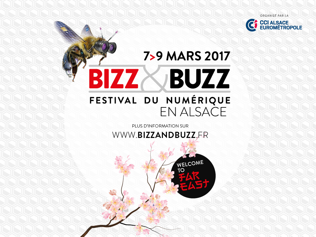 Bizz and Buzz 2017